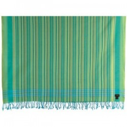 Swara Aqua Green Multi-Striped